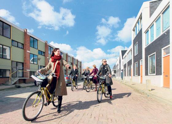 Trots weer gekeerd in rigoureus vernieuwde wijk Holterbroek