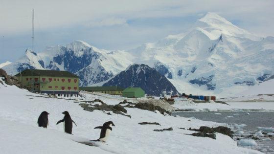 BAM gaat voor miljoenen aan het werk op Antarctica