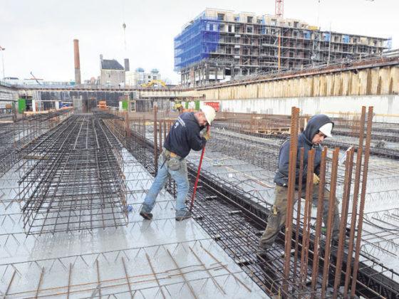 Kou schort betonstort Schelphoek op