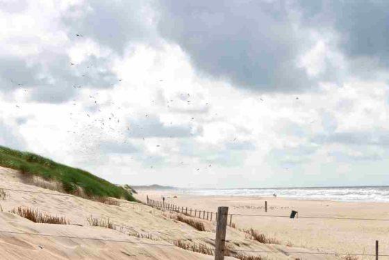 Schultz schrapt aanpassing kustbouw