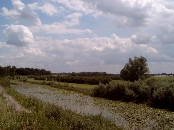 Besparing dijken voor ruimte rivier