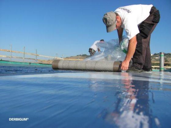 Plantaardige dakbaan winnaar van Dubo Award