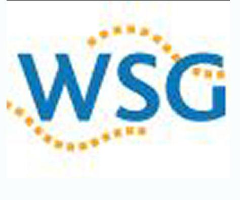 Sanering WSG kost half miljard euro: 8 corporaties verdelen bezit