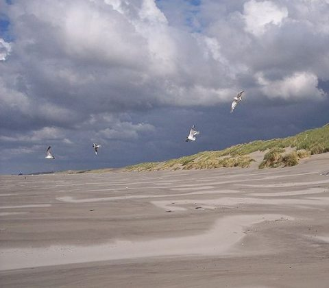 Terschelling vijf hectare kleiner door storm