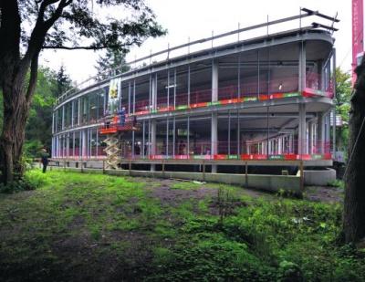 Licht en ruimte in Bilthovense bossen