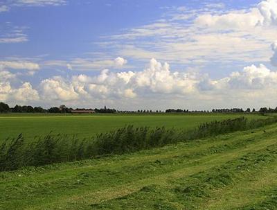 Ruilverkaveling gaat door in Friesland