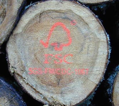 Vijf bouwers bannen fout hout volledig uit