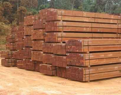 Praktijkproeven met minder bekende soorten hardhout