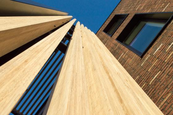 Bamboe nu ook sterk in constructieve toepassing