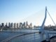 206 rotterdam bridge 80x60