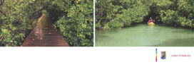 Aanbesteding  Mangrovepark Rifgebied  CURAÇAO