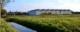 De grassen vlijmen 80x32
