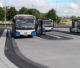 Halteren busstop 80x68