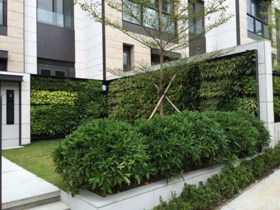 Mobilane voorziet Hongkong van zelfvoorzienende planten