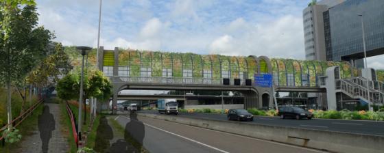 Nelson Mandelabrug A12: grootste loofgang ter wereld?