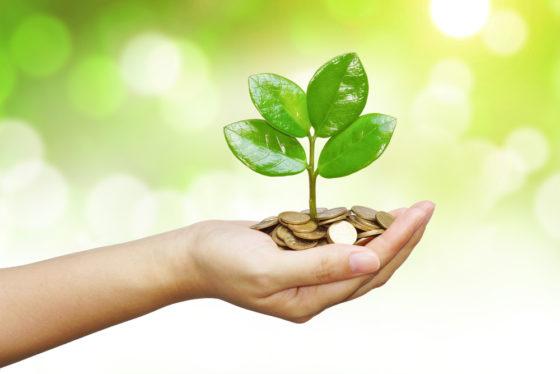 Fonds geeft boost aan duurzaam Nijmegen