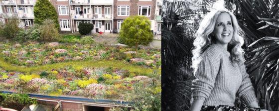 Het Vondelpark op je dak