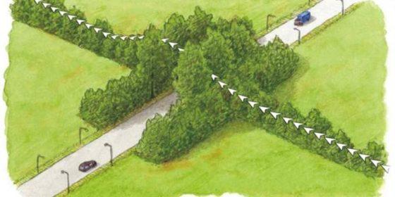 Vleermuizen verhuizen voor N18