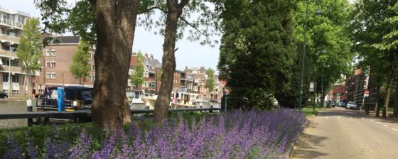 Bewoners willen Singelpark rondom Goudse binnenstad