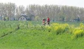 Rivierenland besteedt dijkverbetering aan