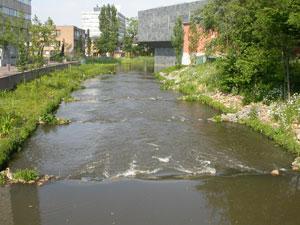Oppervlaktewater probleem voor Nederland