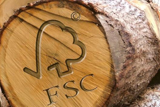 BAM en Heijmans scoren met duurzame houtinkoop
