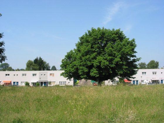 Eindhoven wordt klimaatbestendig