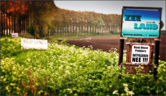 Vlaanderen staakt Hedwige-procedure
