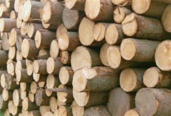 Akkoord over cao houthandel