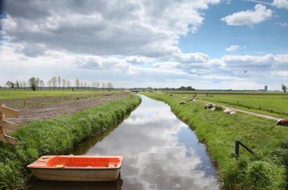 Waterschap pakt kades aan
