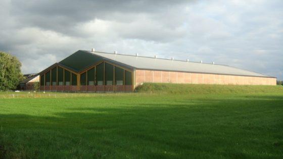 Boer bouwt kalverstal met vijver op zolder