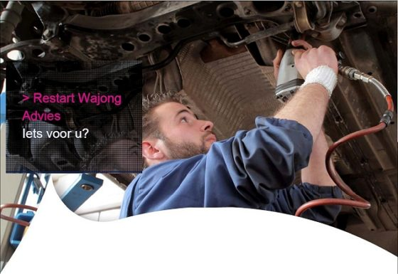 USG Restart geeft bedrijven gratis advies over Wajongers