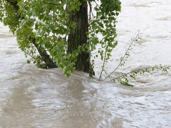 Grontmij helpt Polen in strijd tegen overstromingen