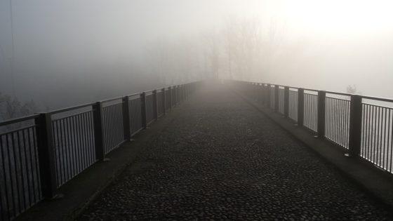 Groot-Lemmer neemt FWD Bridges over