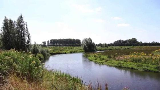 'Waterschap fuseert met provincie'