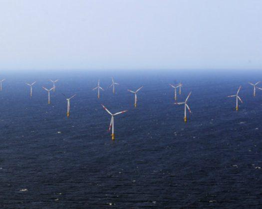 Van Oord werkt mee aan blauwdruk onderwaternatuur windpark