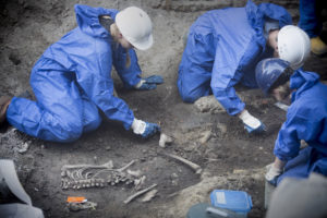 Oude botten onder nieuw Arnhem
