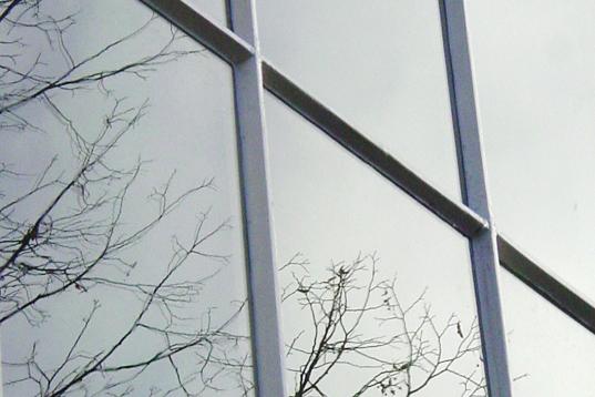 Van Ruysdael Glas.Rechter Nissink Mag Naam Van Ruysdael Glas Voorlopig Niet