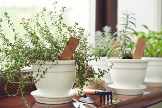 In meeschuivende vensterbank kunnen de plantjes blijven staan als het raam open gaat