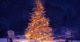 Kerstboom 80x42