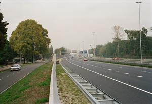 Bomenrijen langs alle snelwegen kost minimaal 3 miljard euro