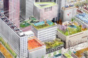 Rotterdam wil natuurroutes, huizen en vliegvelden op stadsdaken