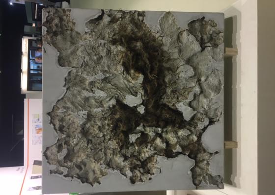 Maaiveld | Een verfrissende kijk op beton, maar het stinkt wel