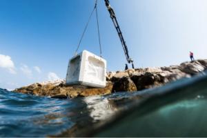 Ecobeton bij windparken en kademuren moet zeeleven bevorderen