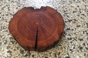 Het hele verhaal van de Noord-Zuidlijn samengebald in een stukje hout