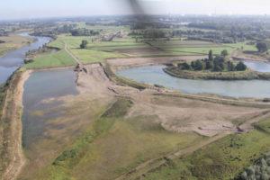 Arcadis krijgt opdracht voor ecologisch herstel Maas voor 4,2 miljoen
