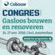 0216 banners 200x200 cobouw gasloosbouwen congres 80x80