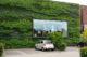 Groene gevel voor betere leefomgeving