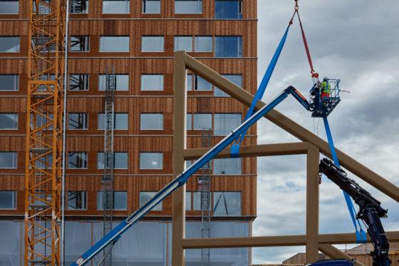 'In 2040 kunnen alle huizen in hout gebouwd zijn'