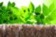 Knauf kaderfoto isolatie met ecose is herkenbaar aan de natuurlijke bruine kleur e1557906169957 80x53